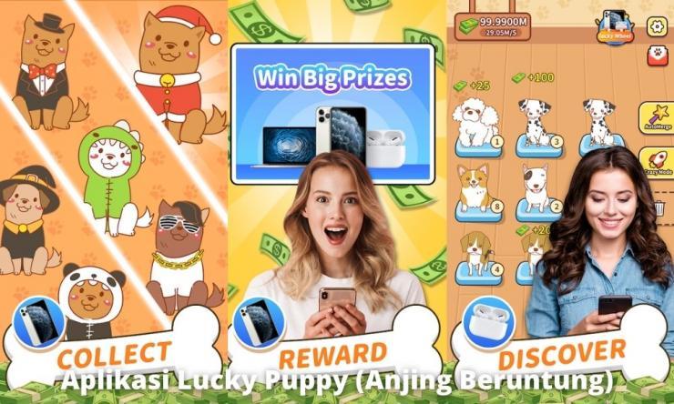 Aplikasi Lucky Puppy (anjing Beruntung) Penghasil Uang
