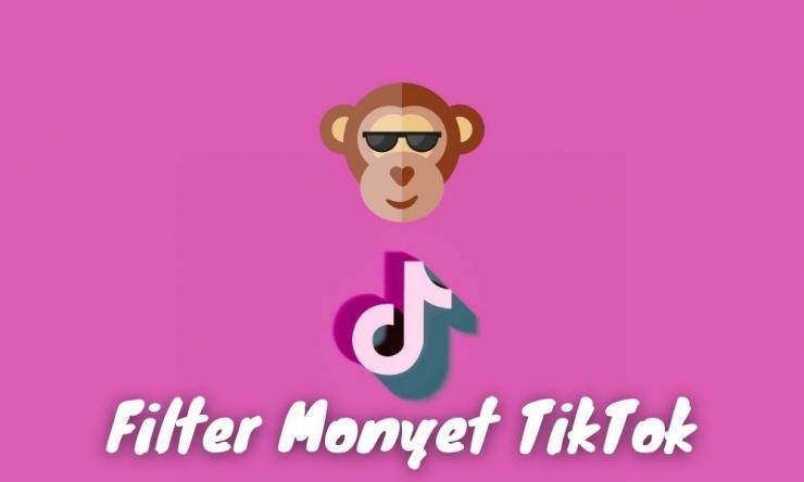 Cara Mendapatkan Filter Monyet Tiktok Dengan Mudah